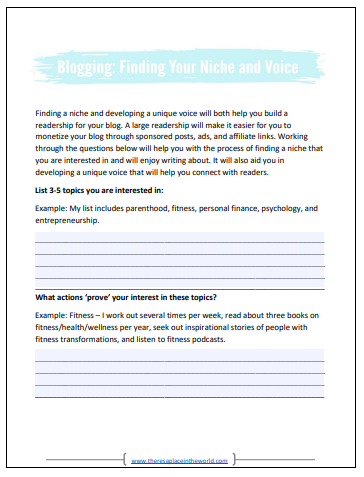 Niche and Voice worksheet